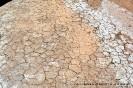 Ausgetrockneter Boden (zwischen San Juan und Mendoza)